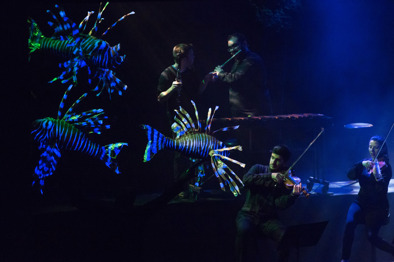 carnaval peces web (1)